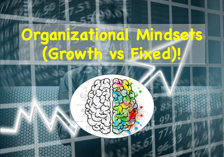 Organizational Mindsets (Growth vs Fixed)!