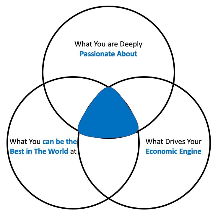 Hedgehog Concept Circles